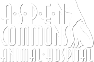 Aspen Commons Animal Hospital Home