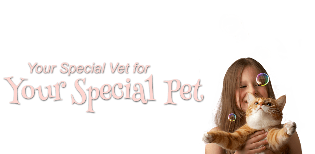 Your Special Vet for Your Special Pet